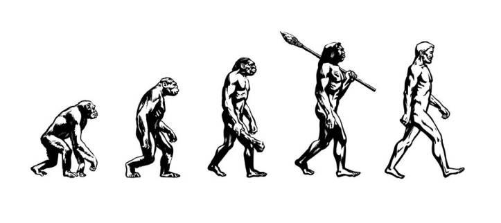feedme.id-teori-evolusi-1